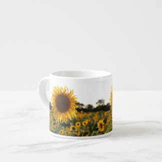 Sunflower garden.Beautiful flowers Espresso Cup