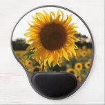 """Sunflower garden.Beautiful flowers Gel Mouse Pad<br><div class=""""desc"""">sunflower&#160;, flower&#160;, sunflowers&#160;, &quot;beautiful flowers&quot;&#160;, &quot;sun flowers&quot;&#160;, &quot;sunflower plant&quot;&#160;, &quot;the sunflower&quot;&#160;, &quot;wild flowers&quot;&#160;, floral&#160;, &quot;sunflower garden&#160;&quot;, flowers&#160;, beautiful&#160;, nature&#160;, country&#160;, farm&#160;, field&#160;, sunflow&#160;, sunflowe</div>"""