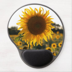 Sunflower Garden.beautiful Flowers Gel Mouse Pad at Zazzle