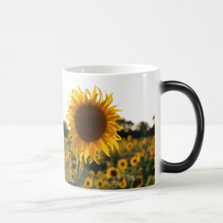 Sunflower garden.Beautiful flowers Magic Mug
