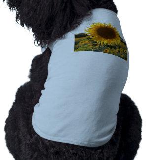 Sunflower garden.Beautiful flowers T-Shirt