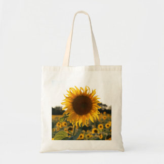 Sunflower garden.Beautiful flowers Tote Bag