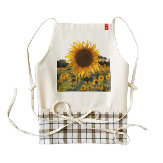 Sunflower garden.Beautiful flowers Zazzle HEART Apron