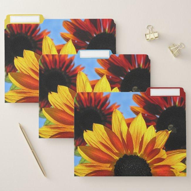 Sunflower Garden Flower Floral File Folder Set