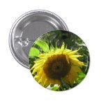 Sunflower Gardening Button