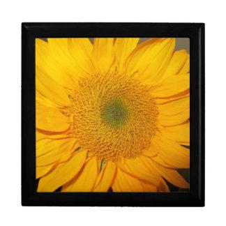 Sunflower giftbox gift box