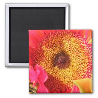 Sunflower Gifts magnet