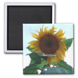 Sunflower, Good Morning ! - Square Magnet Button