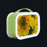 """Sunflower green and yellow 2c personalized lunch box<br><div class=""""desc"""">you can add the name of soeone special to this , great for school, just put your childs name on this to personalize! you can change the handle color, as well as all text inis design can be either changed or deleted entirely. change text color, size, text font, and text...</div>"""