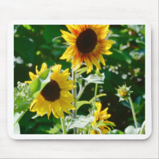 Sunflower Happiness Mouse Pad
