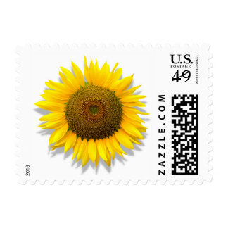 Sunflower, heart inside /Postage size small Postage