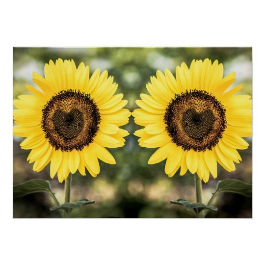 Sunflower hearts in love poster