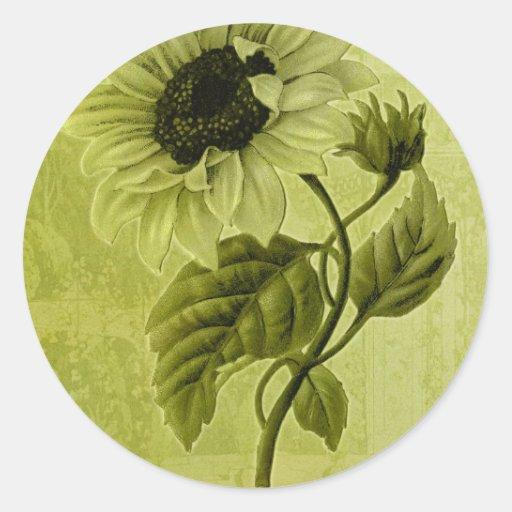 Sunflower Helianthus Classic Round Sticker
