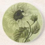 Sunflower Helianthus Coaster