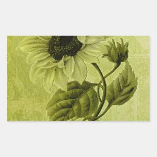 Sunflower Helianthus Rectangular Sticker