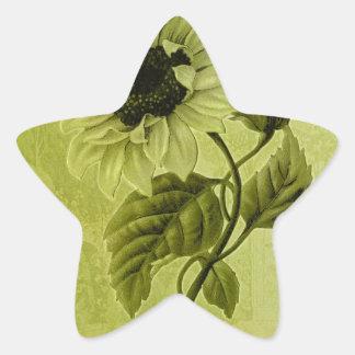 Sunflower Helianthus Star Sticker