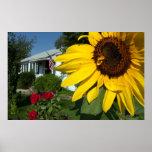 Sunflower Home Print