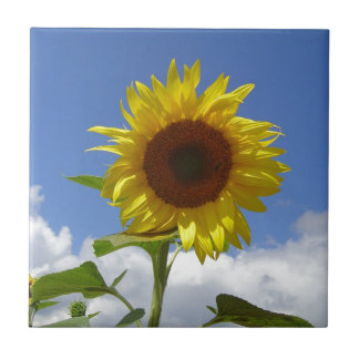 Sunflower in a Blue Sky Small Square Tile