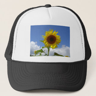Sunflower in a Blue Sky Trucker Hat