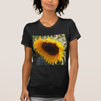 Sunflower in August Tees