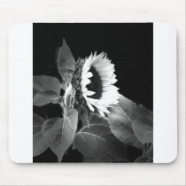 sunflower in black and white mouse pad