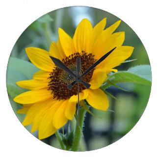 Sunflower in Bloom Wallclock