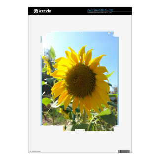 Sunflower in the garden decals for the iPad 2