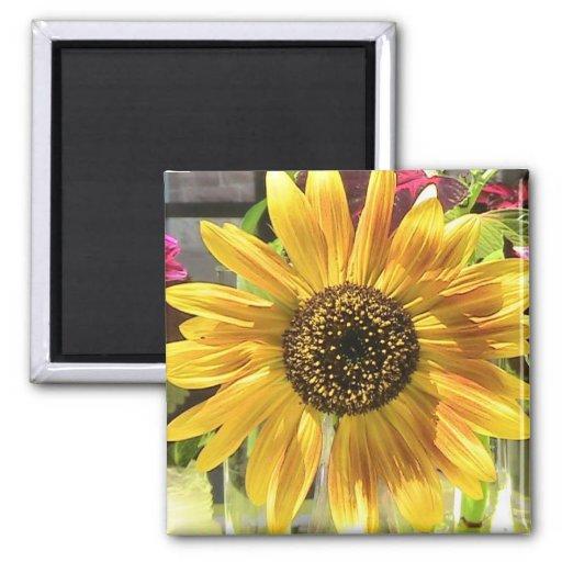 Sunflower in the Sun Refrigerator Magnet