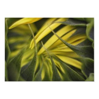 Sunflower Invitation Personalized Invitations