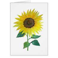 Sunflower invitation,announcement, thank you card