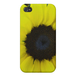 sunflower iPhone 4/4S cases