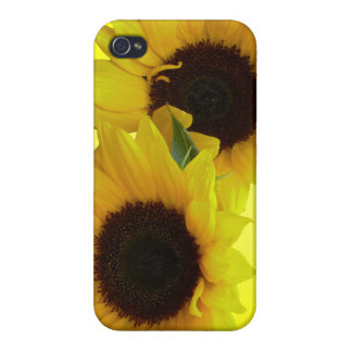Sunflower iPhone 4 Case Sunflower iPhone Case