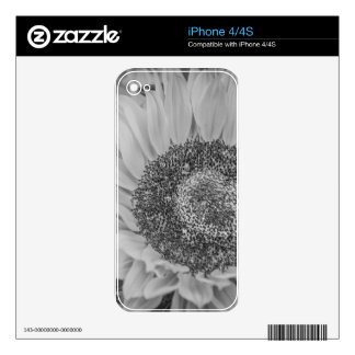 Sunflower iPhone 4 Skin