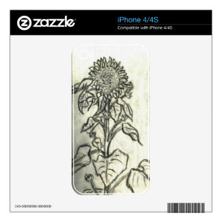 Sunflower iPhone 4 Skins