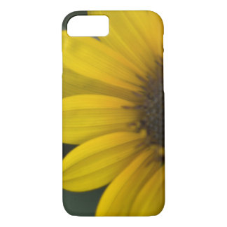 Sunflower iPhone 7 case