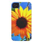 Sunflower iPhone Case Case-Mate iPhone 4 Case
