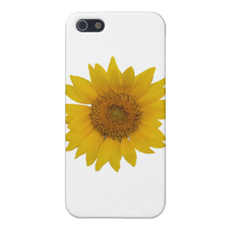Sunflower iPhone SE/5/5s Cover