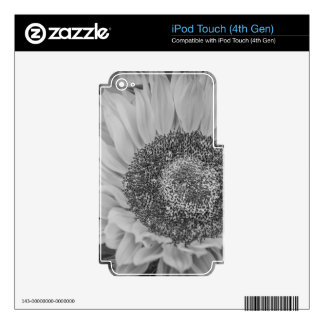 Sunflower iPod Touch 4G Decals