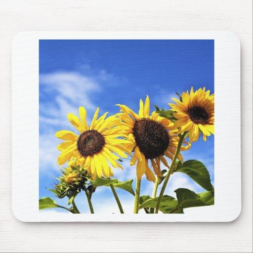 sunflower.jpg alfombrillas de ratones