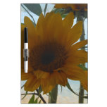 Sunflower lake view Dry-Erase board