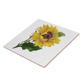 Sunflower Large Square Tile