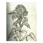 Sunflower Letterhead Template