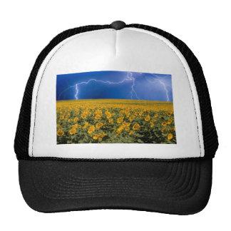 Sunflower Lightning Field Mesh Hat