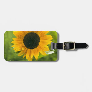 Sunflower Travel Bag Tags