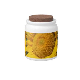 Sunflower Macro Candy Jars