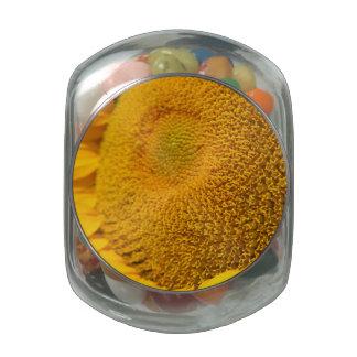 Sunflower Macro Glass Jars