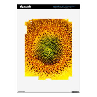 Sunflower macro iPad 3 skin
