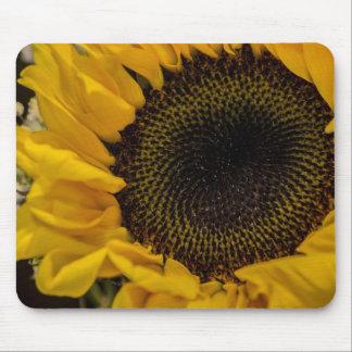 Sunflower Macro Photo Mouse Pads
