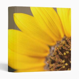 Sunflower Macro Photography 3 Ring Binder