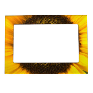 Sunflower Magnetic Frame
